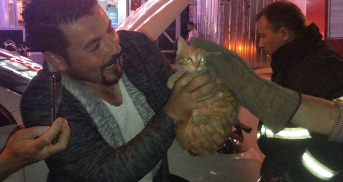 Bilecik'te bir aracın motoruna sıkışan yavru kedi, 2 saatlik çalışmanın ardından kurtarıldı.