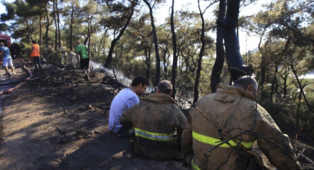 Heybeliada'da çıkan orman yangını Orman Bölge Müdürlüğü ekiplerinin karadan ve havadan müdahalesiyle kontrol altına alındı.