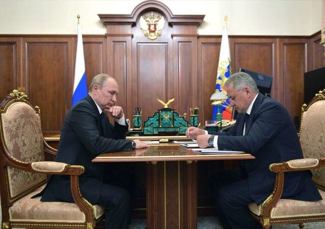 Rusya Devlet Başkanı Vladimir Putin, Savunma Bakanı Sergey Şoygu