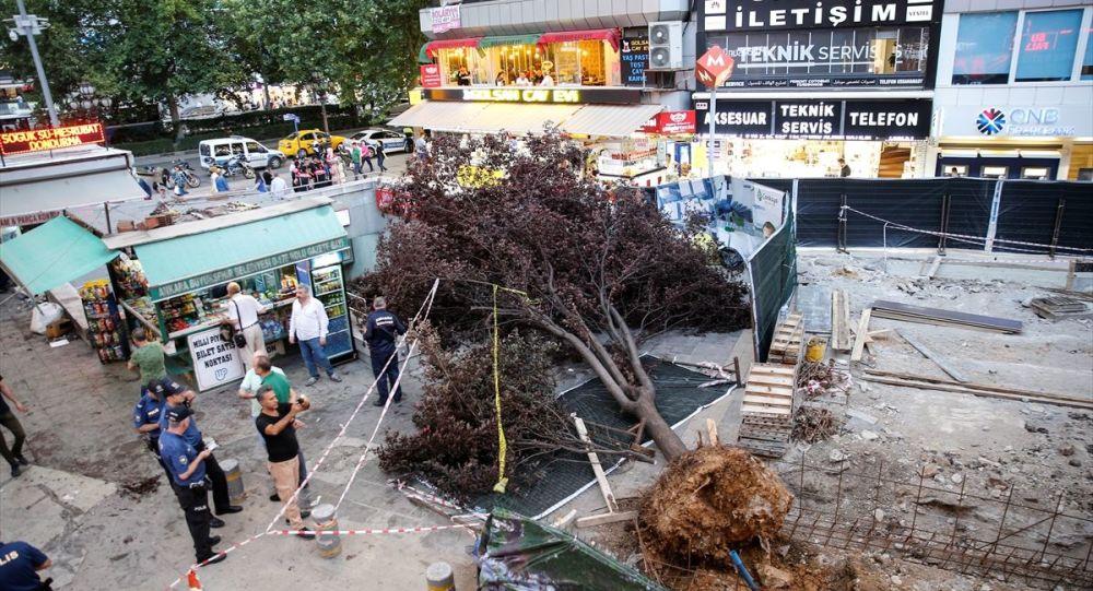 Ankara'da akşam saatlerinde etkili olan fırtınada devrilen ağaç 3 kişinin yaralanmasına neden oldu.