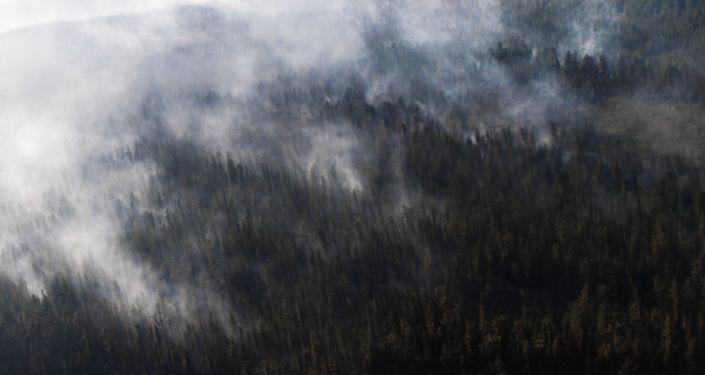 Sibirya'da orman yangını