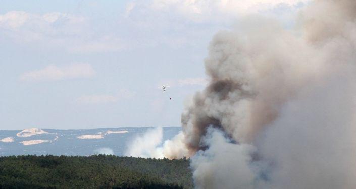 Bursa'daki orman yangını 12 saat sonra 'kısmen' kontrol altına alındı