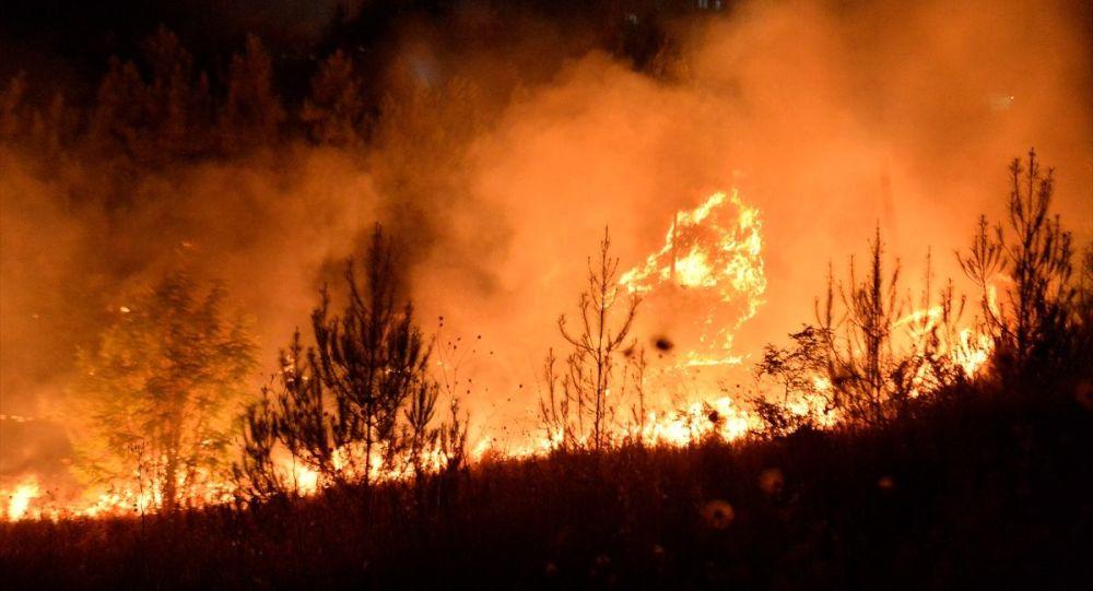 Tarihi Mardin Kalesi eteklerindeki arazide çıkan yangın