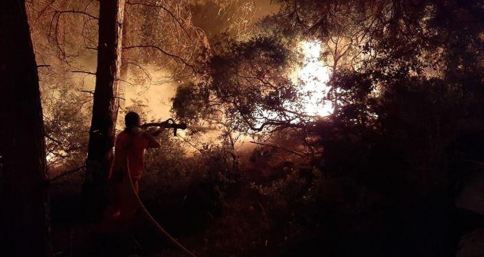 Antalya'nın Manavgat ilçesinde orman yangını