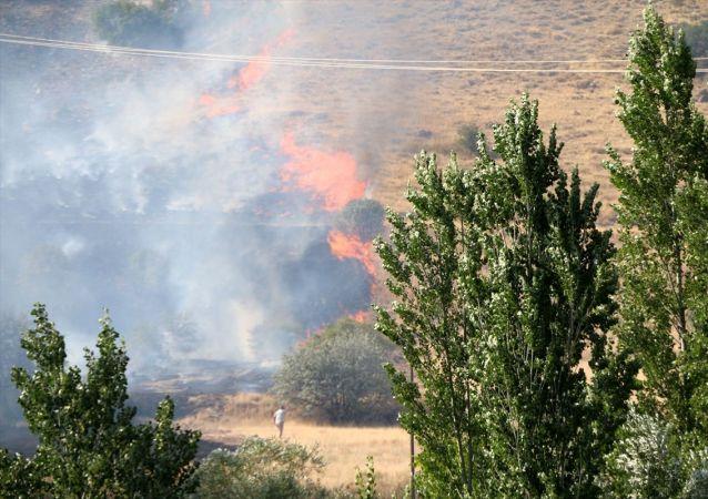 Malatya'nın Hekimhan ilçesinde ormanlık, kayısı bahçeleri ve boş arazilerin bulunduğu 50 hektarlık alan yangında zarar gördü. Malatya Valisi Aydın Baruş (sol-2), olay yerine gelerek bilgi aldı.