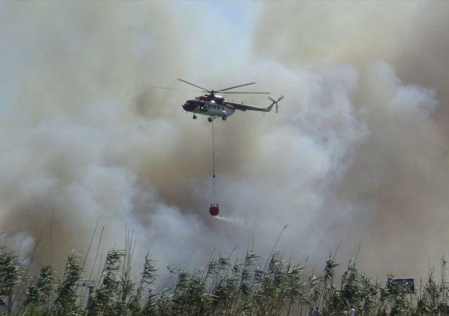 Balıkesir'in Edremit ilçesinde sazlık alanda çıkan yangın kontrol altına alındı.