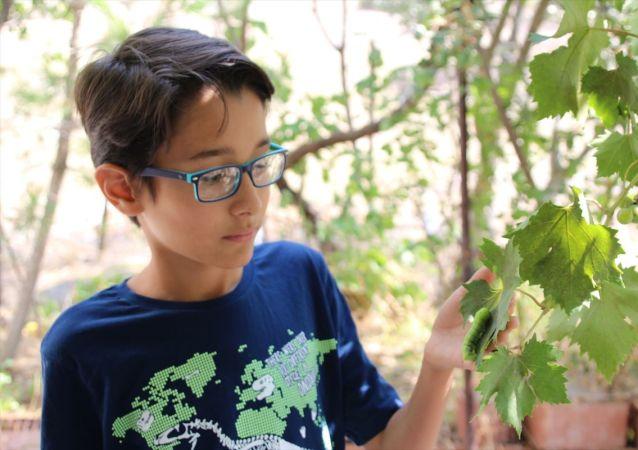 Balıkesir'in Sındırgı ilçesinde hayvanları anlattığı videoları sosyal medyada ilgi gören 12 yaşındaki Mehmet Kanur, eğitim alarak belgeselci olmayı hedefliyor.