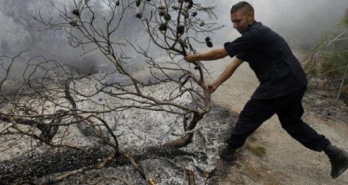 İsrail ordusu tarafından, sınırın Lübnan tarafındaki meşe ormanlarına yangın bombası atıldığı belirtildi.