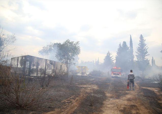 Antalya'da mahalle arasındaki çalılık alanda çıkan yangın kontrol altına alındı. Sosyal medyadaki canlı yayından yangın olduğunu öğrenen çocuklar da bidonlarla söndürme çalışmalarına destek oldu.