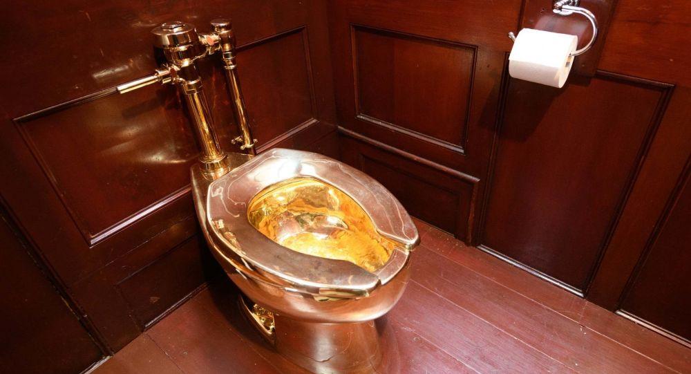 İngiltere'de eski Başbakan Winston Churchill'in doğduğu saraydan değeri 5 milyon doları geçen altın klozetin çalındığı belirtildi