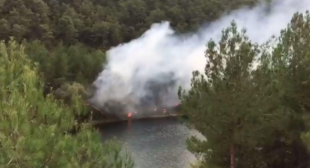 Samsun'un Bafra ilçesinde sorumsuz piknikçiler ormanlık alanda yangın çıkardı