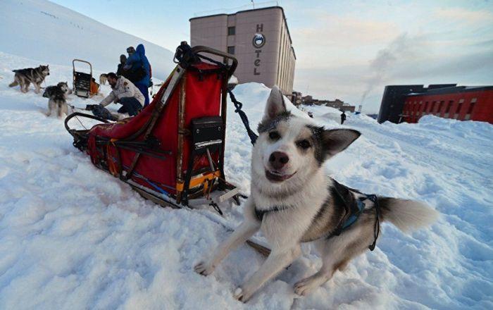 Facebook, Rossiya Segodnya Uluslararası Haber Ajansı'nın Arktik projesinin hesabını kaldırdı