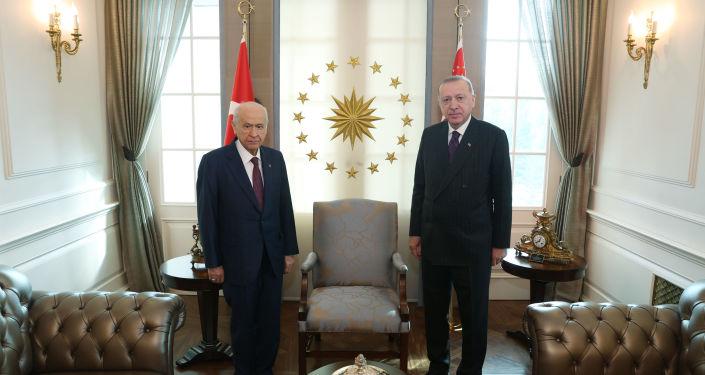 MHP Genel Başkanı Bahçeli, Cumhurbaşkanı Erdoğan'a çınar fidanı hediye etti
