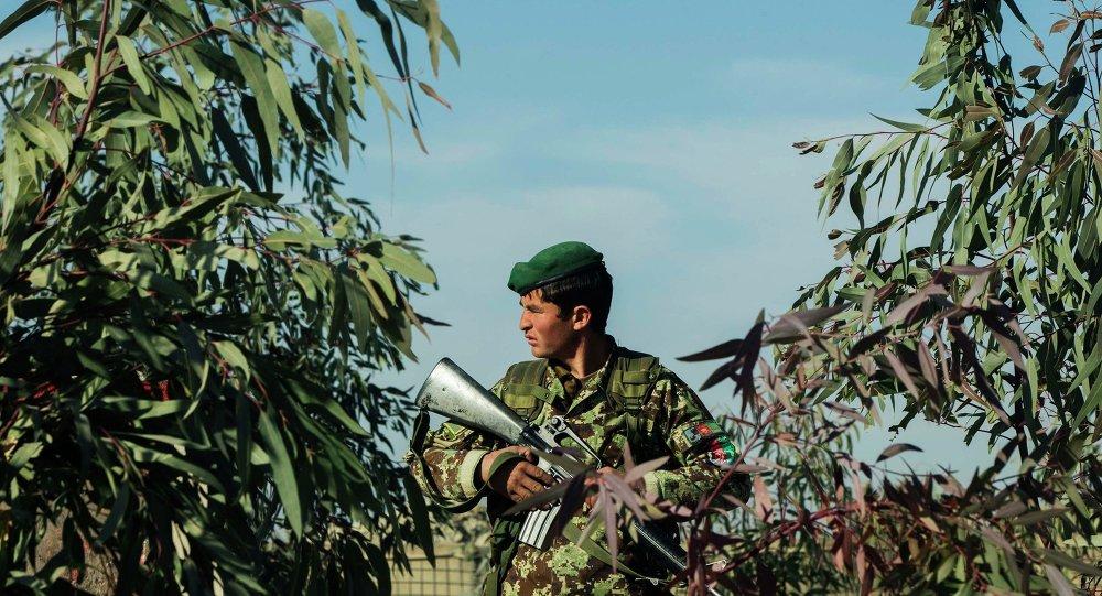Afganistan ordusundan bir asker