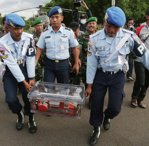 Endonezya AirAsia uçağının kara kutusu