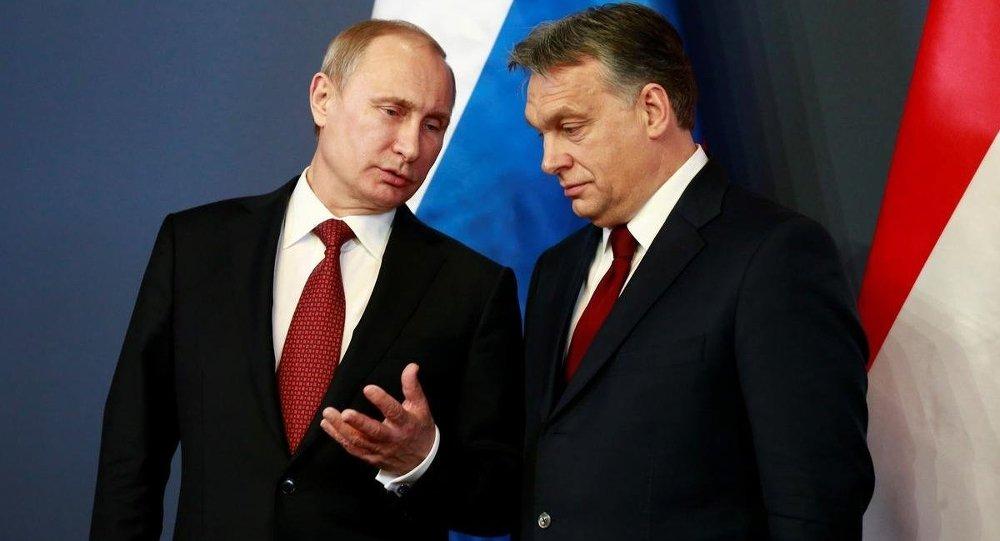 Rusya Devlet Başkanı Vladimir Putin - Macaristan Başbakanı Viktor Orban