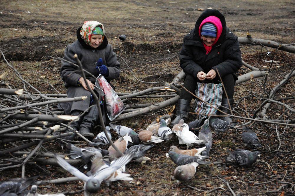 Debaltsevo'da yaşlı kadınlar güvercin besliyorlar