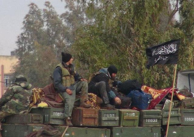 Nusra Cephesi