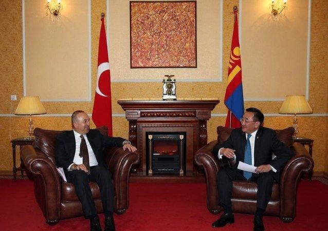 Dışişleri Bakanı Mevlüt Çavuşoğlu- Moğol mevkidaşı Lundeg Purevsuren