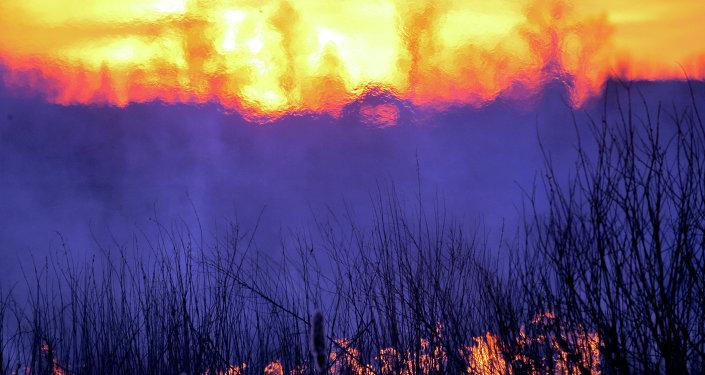 Çernobil nükleer santrali yakınlarındaki eski bir yangın