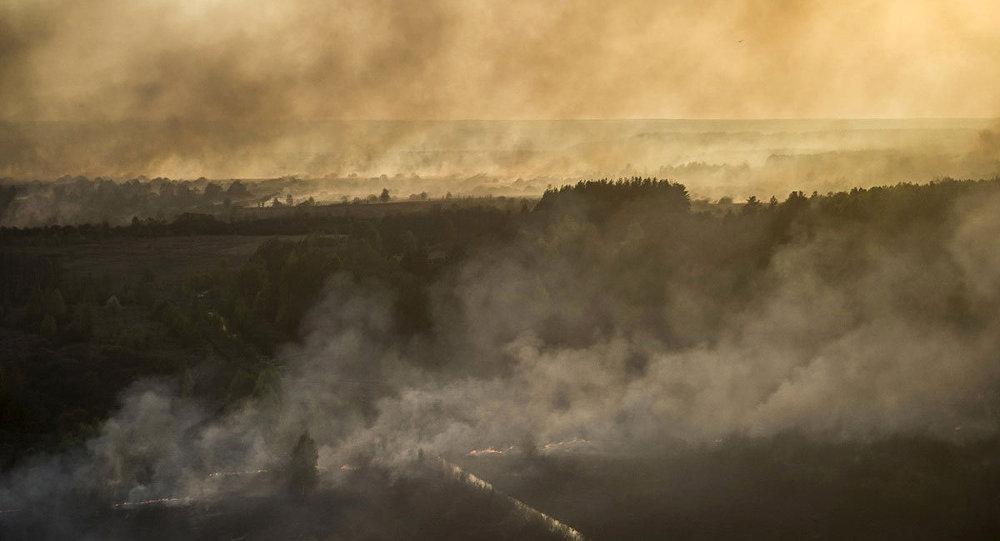 Çernobil nükleer santrali yakınlarındaki yangın