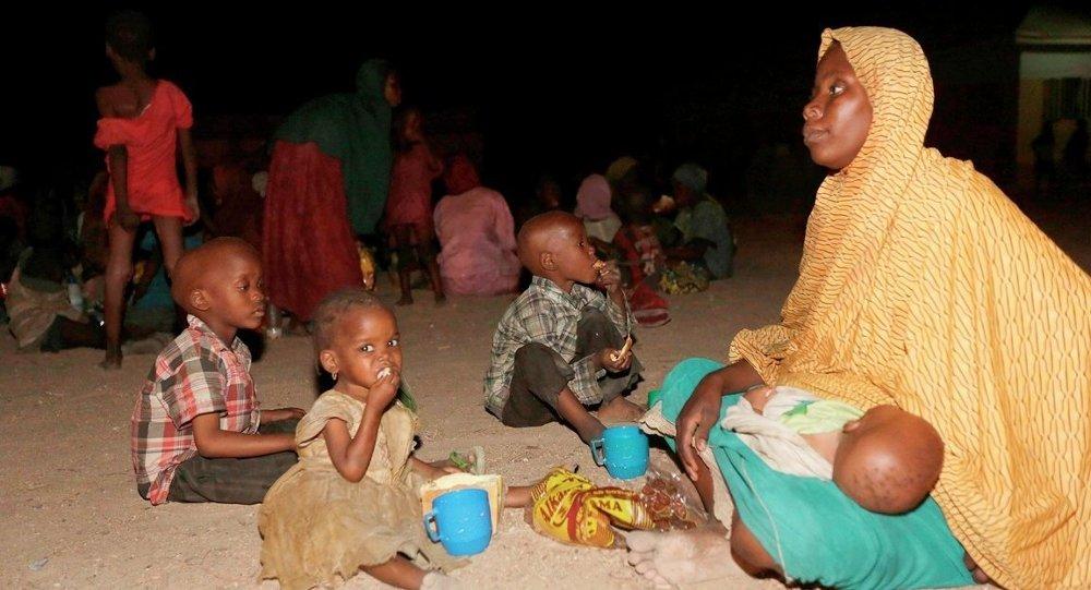Nijerya'da ordunun Boko Haram örgütünün kalesi Sambisa ormanından kurtardığı 687 kadın ve kız çocuğundan 214'ünün hamile olduğu belirtildi.