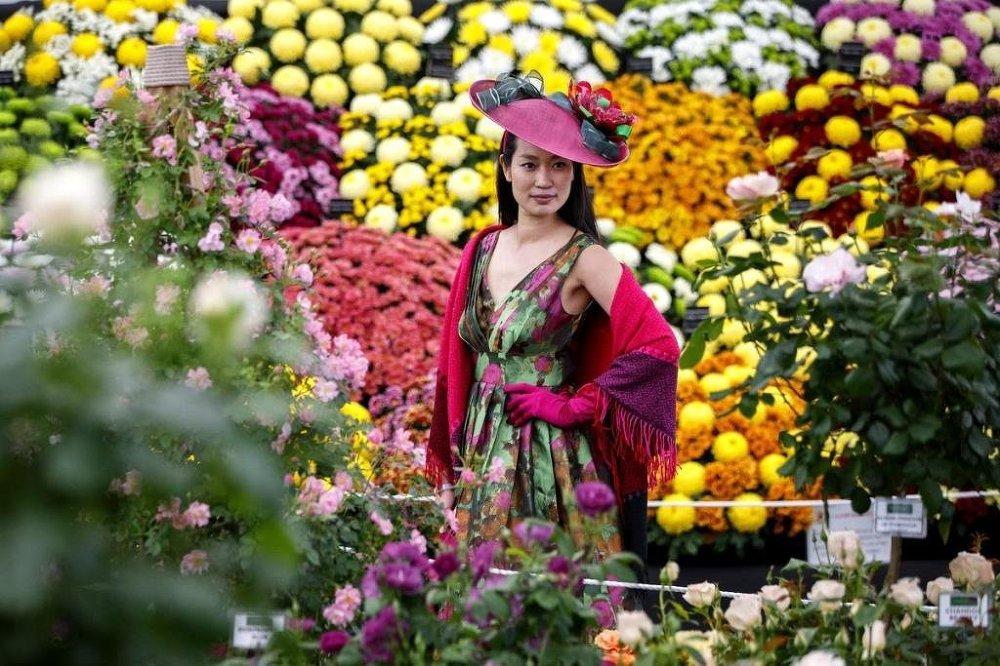 Londra'nın batısındaki Kraliyet Chelsea Hastanesi'nin bahçesinin bulunduğu alan büyük bir botanik bahçesine dönüştürüldü.