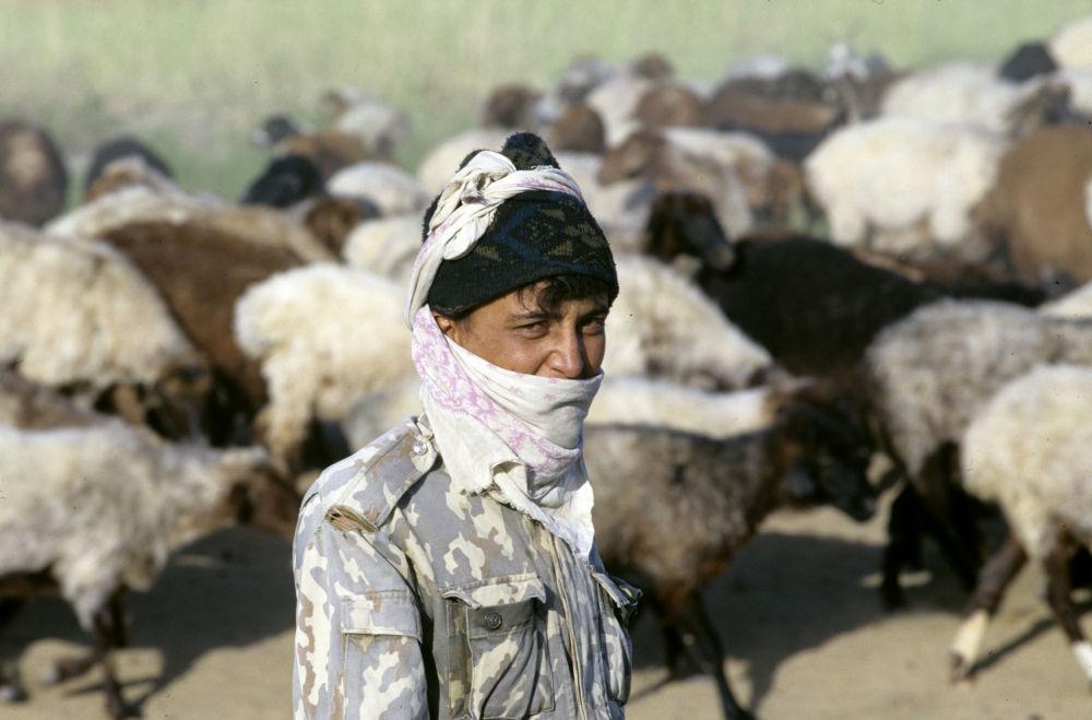 Türkmenistan'ın tarihi Türk kenti Merv'de bir çoban