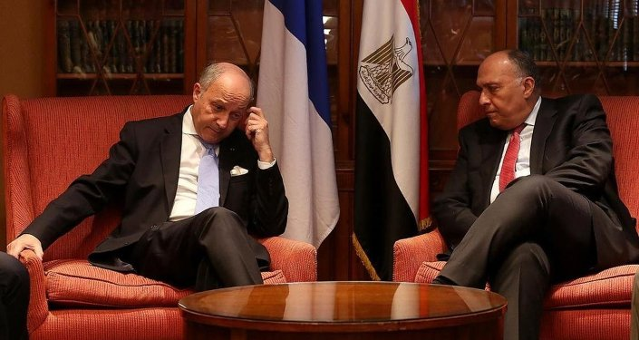 Fransa Dışişleri Bakanı Laurent Fabius- Mısırlı mevkidaşı Samih Şükri
