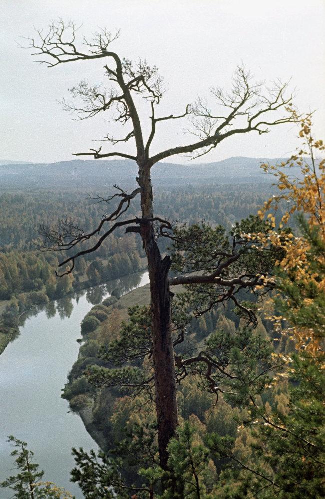 Ural sonbahar manzarası