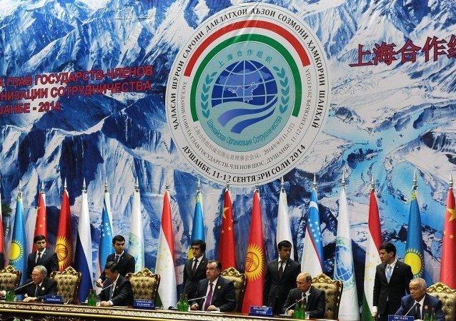 Şanghay İşbirliği Örgütü (ŞİÖ) 2014 zirvesi