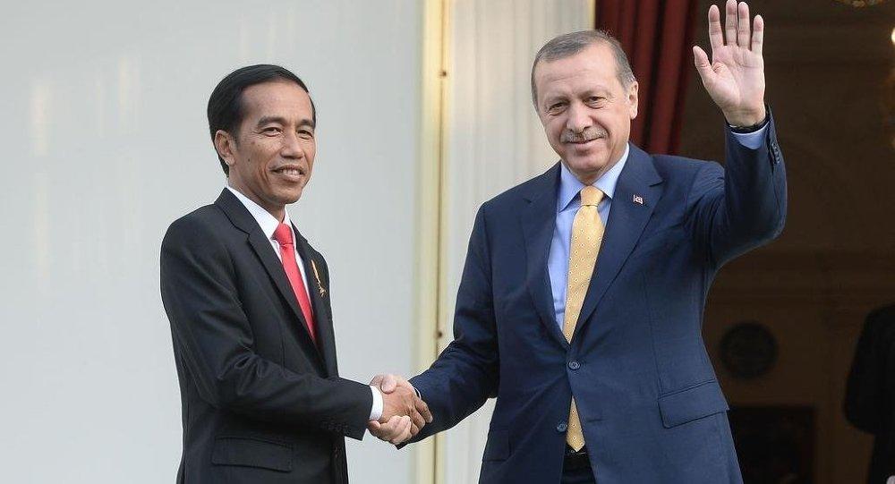 Recep Tayyip Erdoğan & Joko Widodo