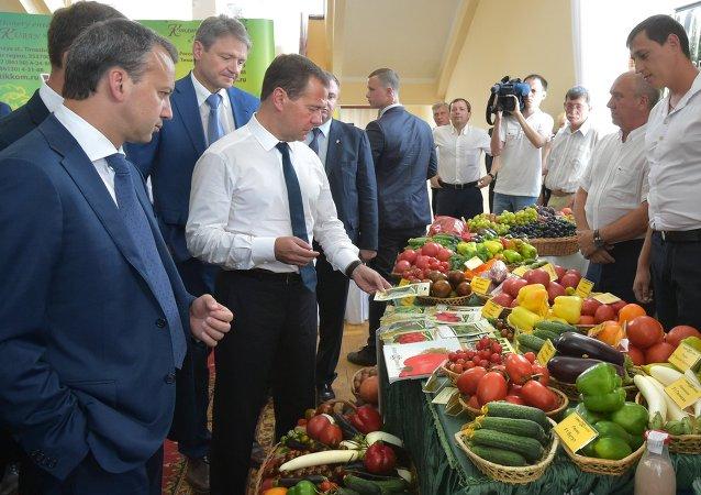 Aleksandr Tkaçev, Dmitry Medvedev