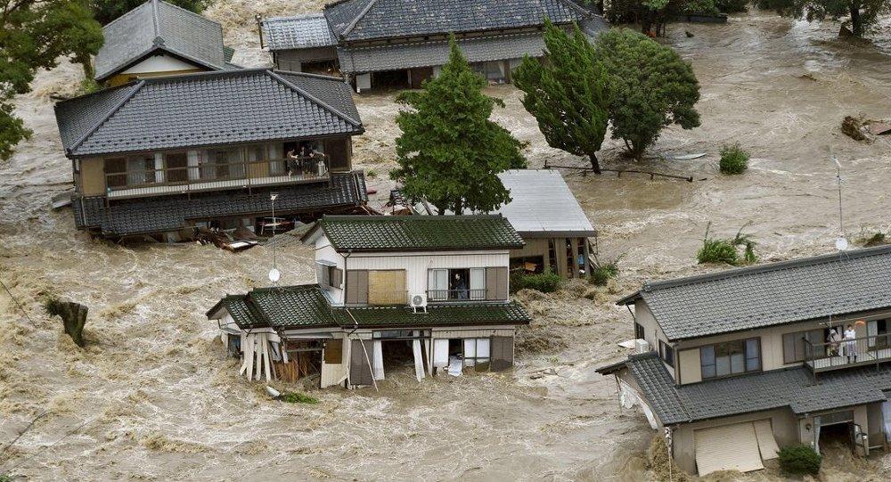 Japonya'da sel