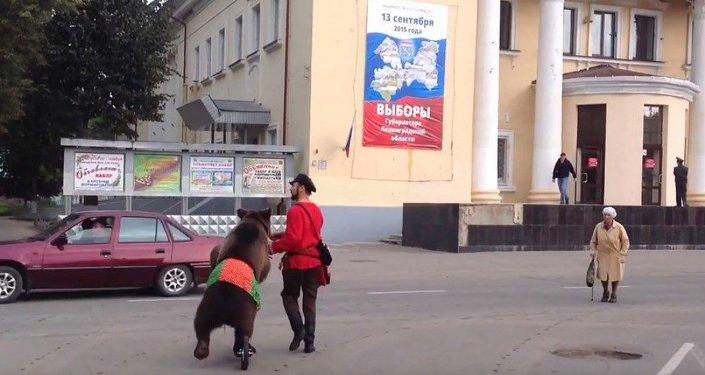 Rusya'da yerel seçimler