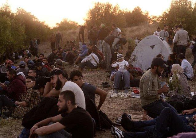 Edirne'den Yunanistan'a gitmek isteyen sığınmacılar
