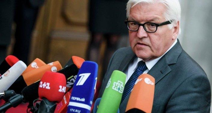 Almanya Dışişleri Bakanı Frank-Walter Steinmeier