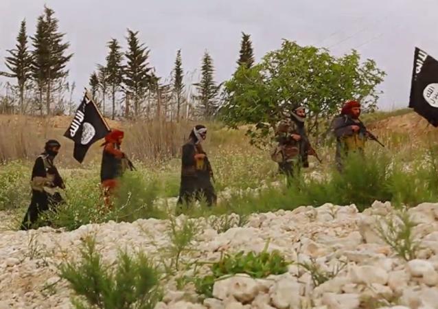IŞİD (Arşiv)