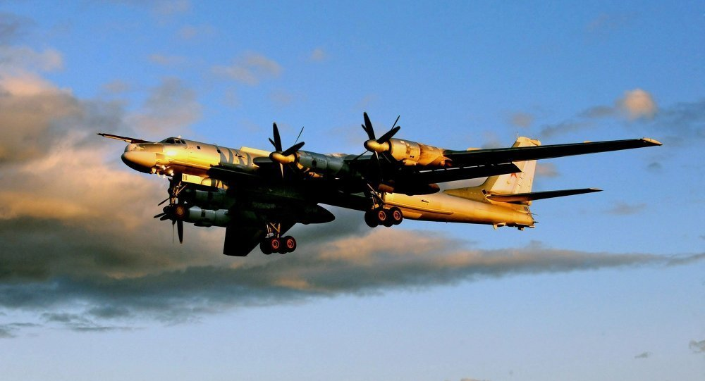 Tu-95MS