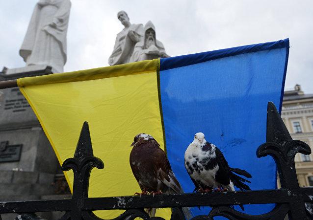 Ukrayna Bayrağı
