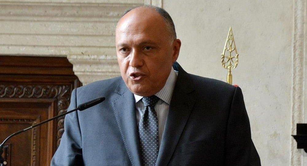 Mısır Dışişleri Bakanı Samih Şükri