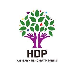 HDP logo