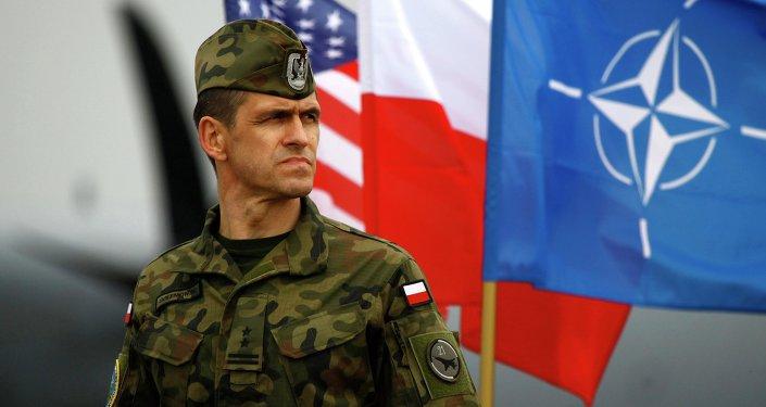 Polonya ve NATO bayraklarının yanında duran bir Polonya askeri