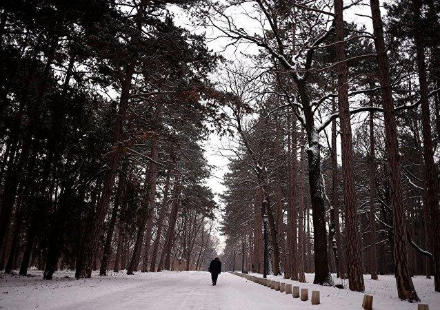 Bulgaristan'ı buz vurdu