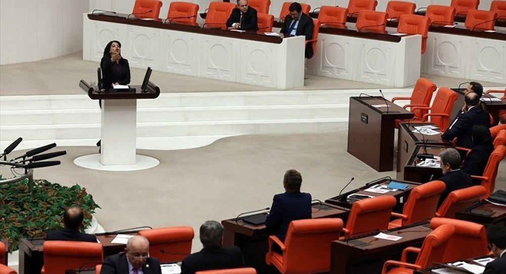 HDP Diyarbakır Milletvekili Sibel Yiğitalp, TBMM Genel Kurulu'nda konuşma yaptı.