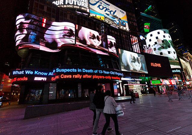 Times Meydanı, 'kedi istilası' altında