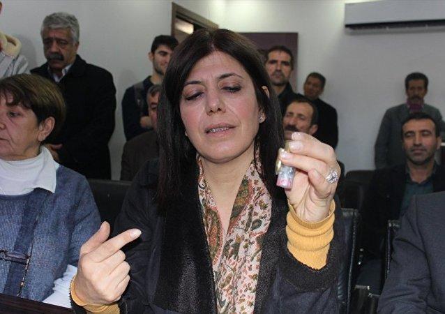 HDP Eş Genel Başkan Yardımcısı Meral Danış Beştaş, partisinin Adana İl Başkanlığında düzenlediği basın toplantısında, kentte bazı evlere üzerinde 'Hizbullah' ve 'PKK' yazılı mermi gönderildiği iddiasında bulundu.