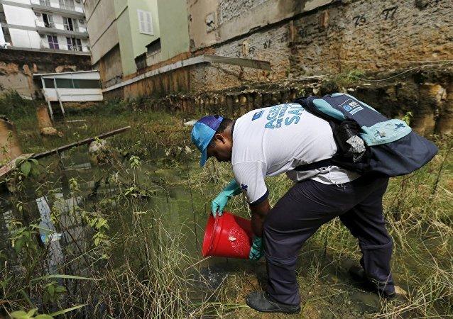 Brezilya- Zika virüsü