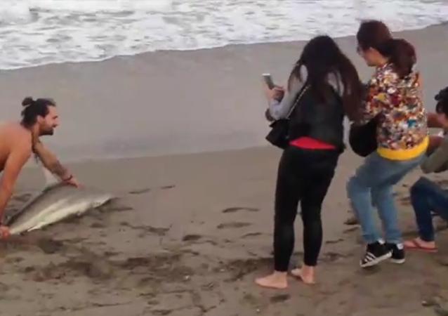 Selfie çekmek için köepk balığını denizden çıkardılar