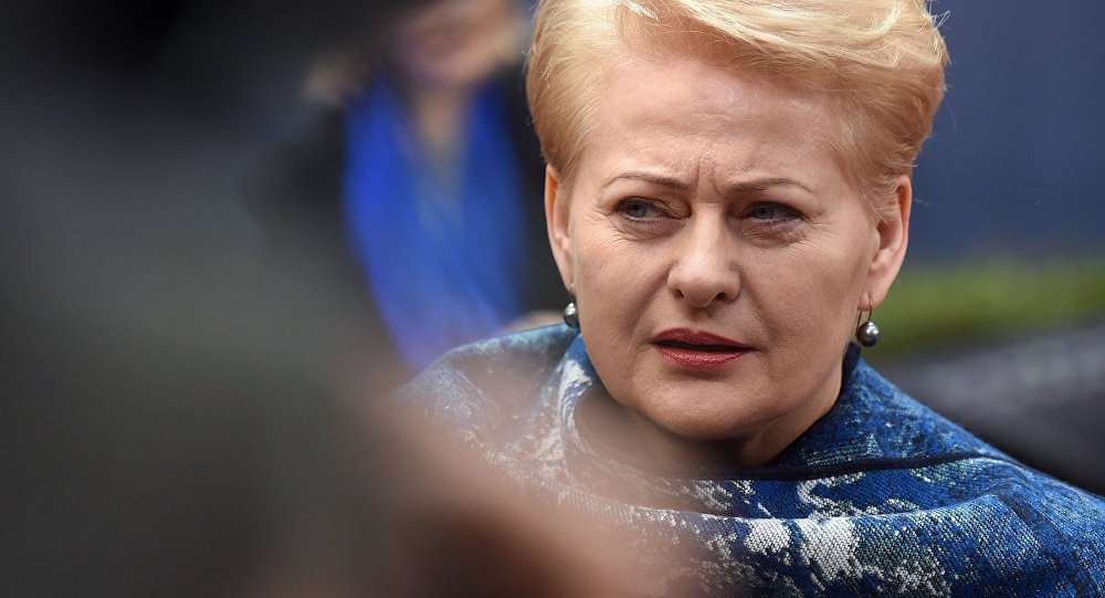 Litvanya Cumhurbaşkanı Dalia Grybauskaite